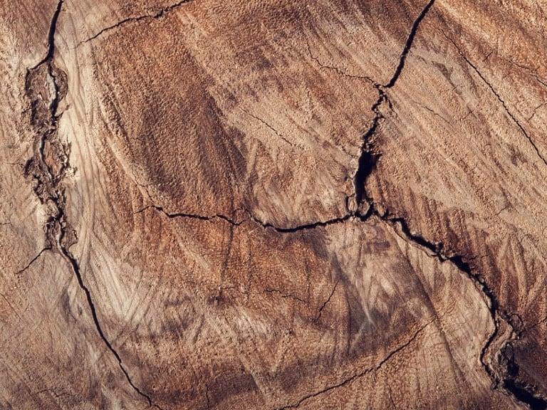 Holzarten Richtig Kombinieren Miamöbel