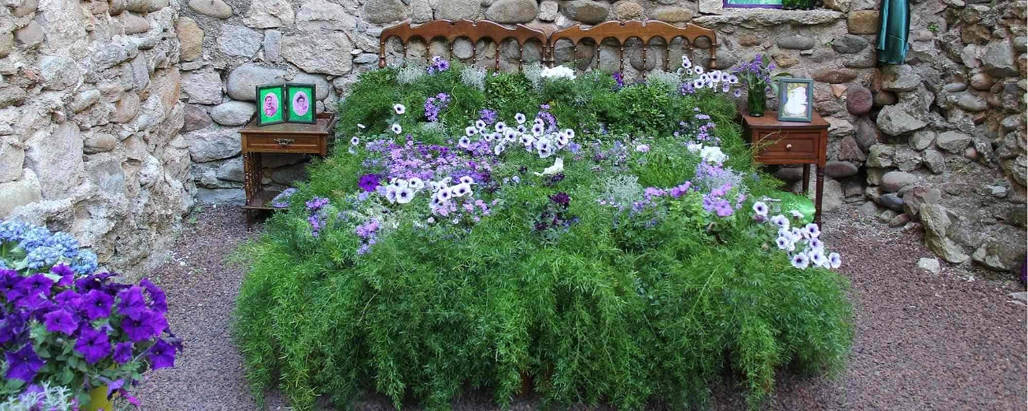 die besten Pflanzen fürs Schlafzimmer   MiaMöbel